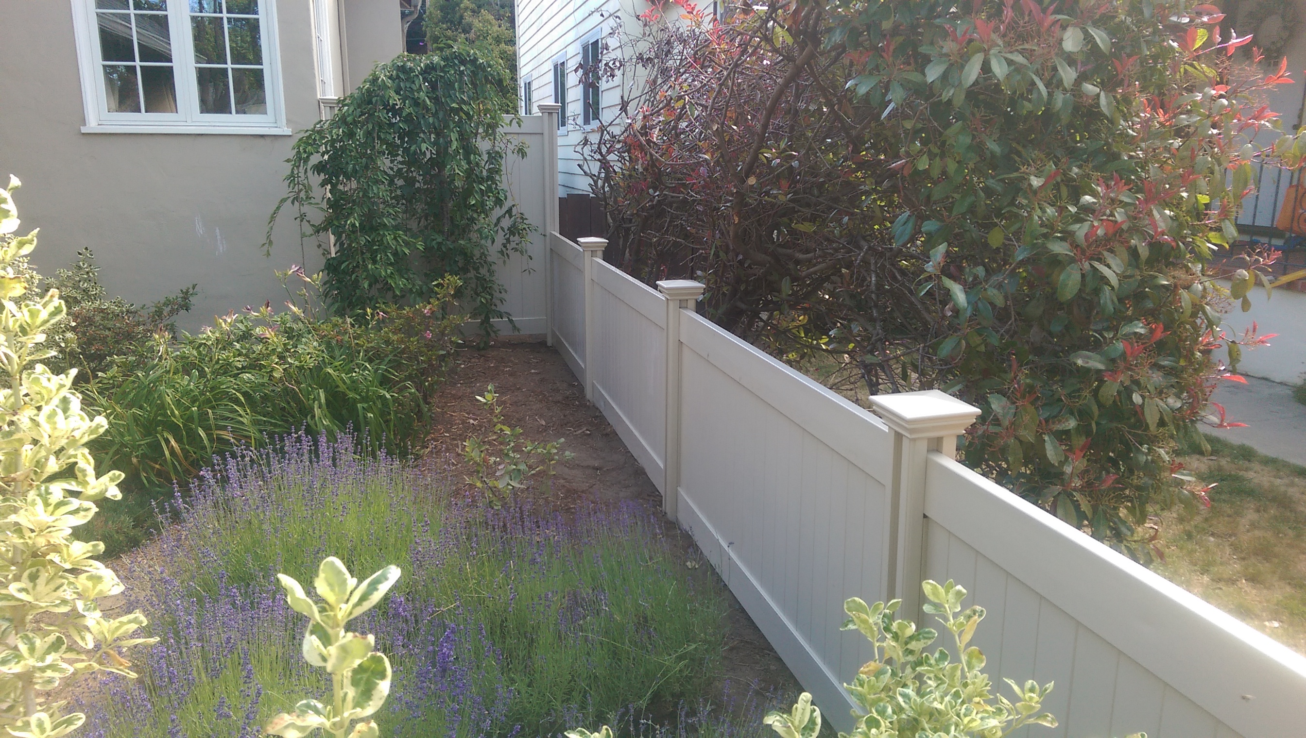 Dan replaced the wood fence with a tan privacy fence. He cuts it down from 6ft to 4ft.