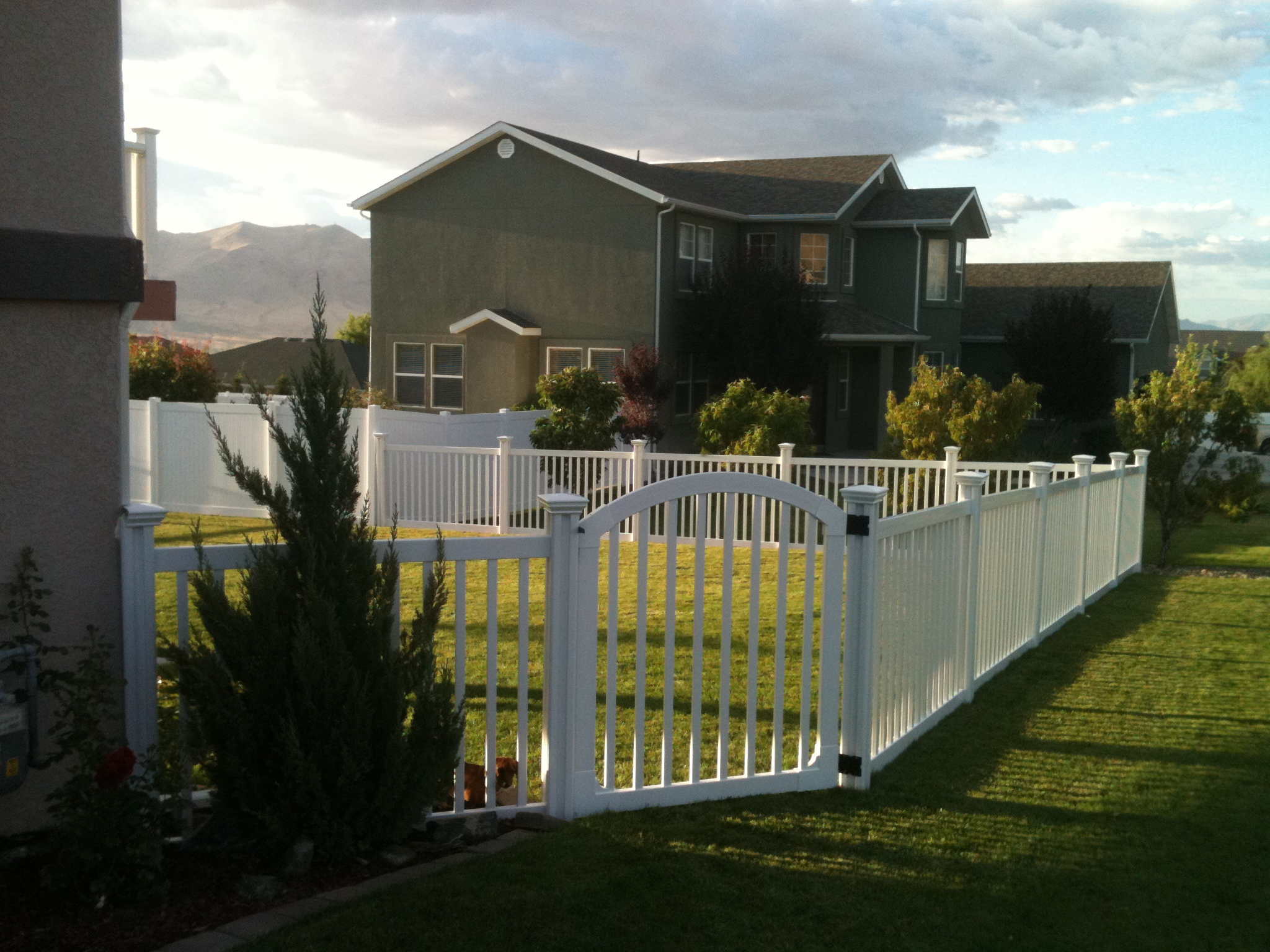 Tobin Does Our Vinyl Fence Proud