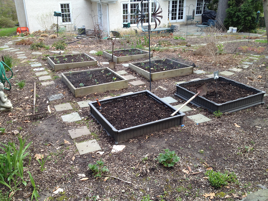 This vegetable garden needs a fence!