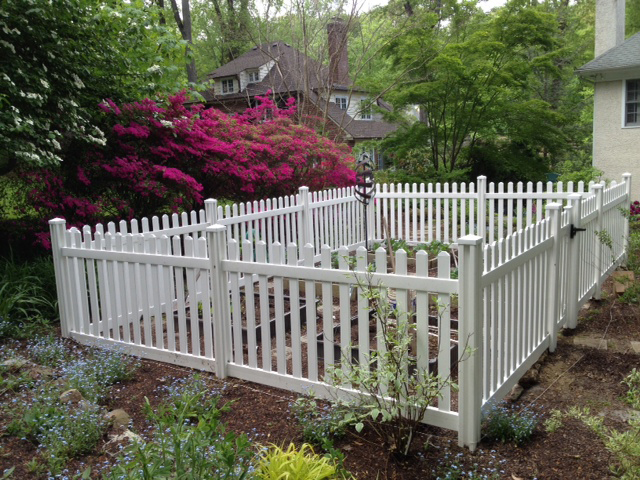 What a great looking vegetable garden with the vinyl picket fence!