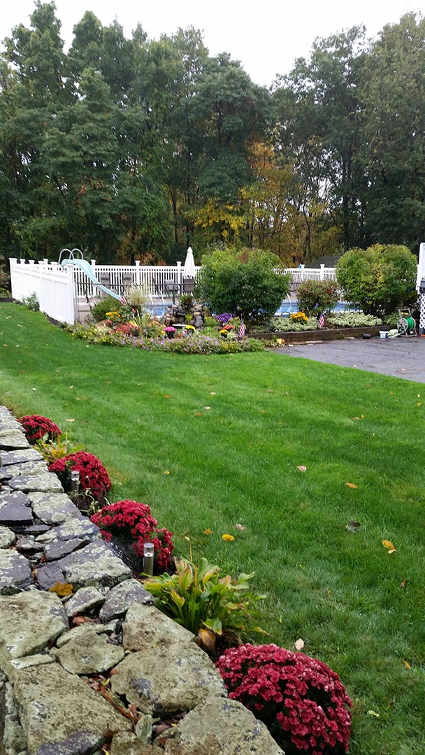 Beautiful landscaping makes the backyard complete!