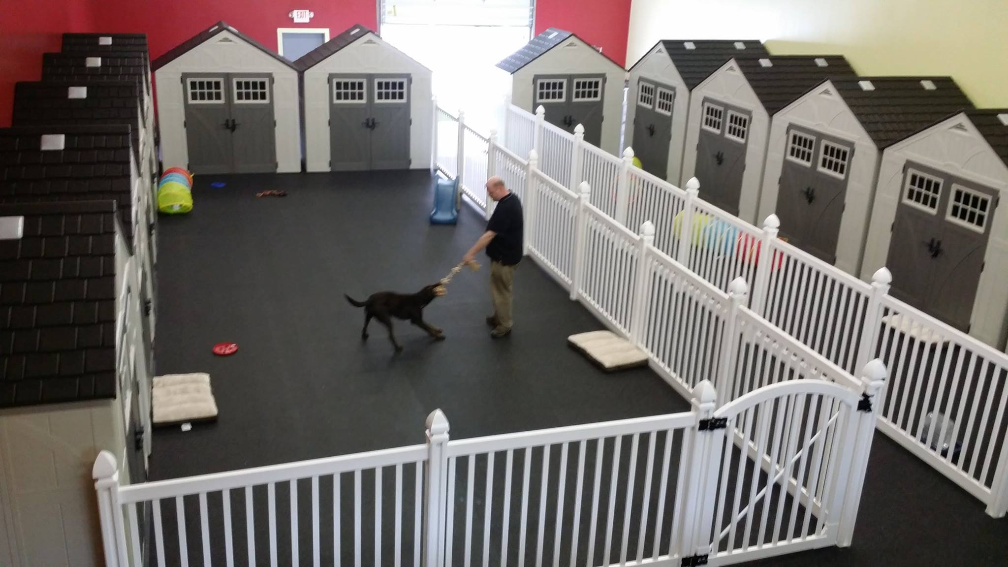 Why Dog Daycare Owners Are Choosing Wambam Fence Wambam