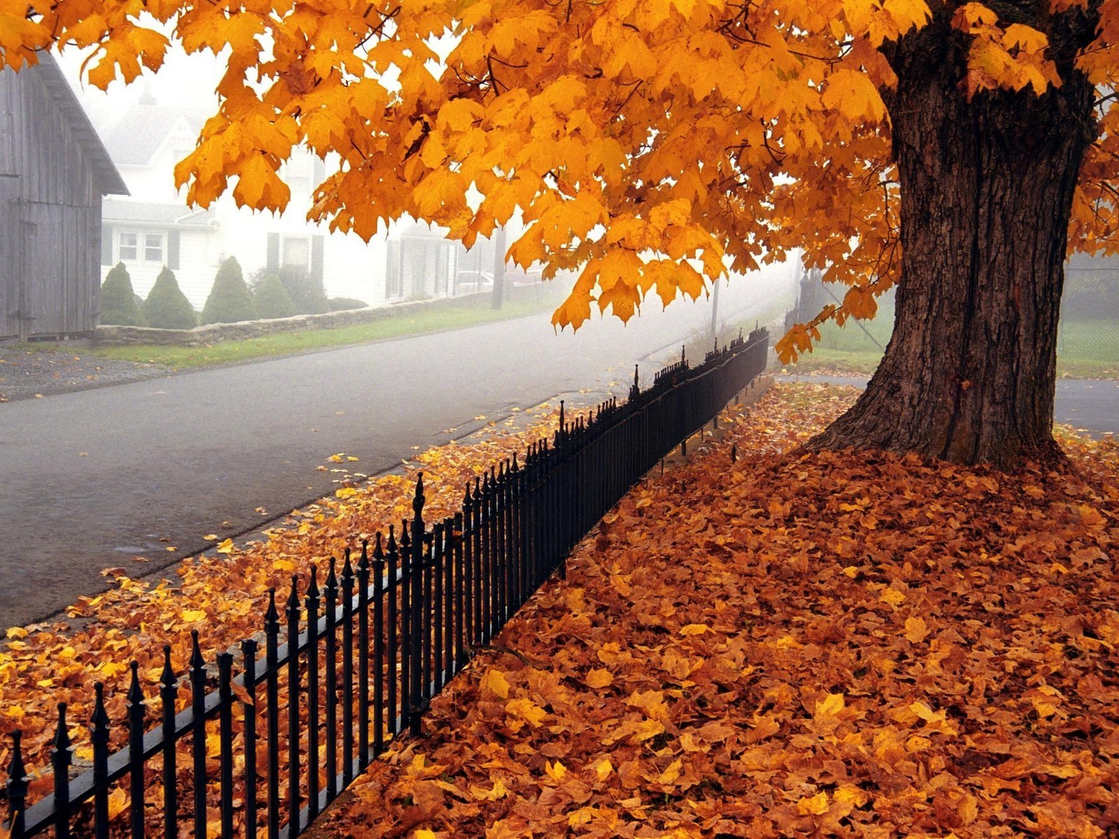 Fall is the Perfect Time to Install a Fence